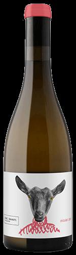 Micalet Javi Revert viticultor