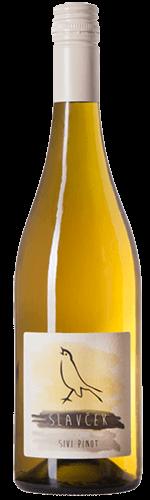 Sivi Pinot Slavček